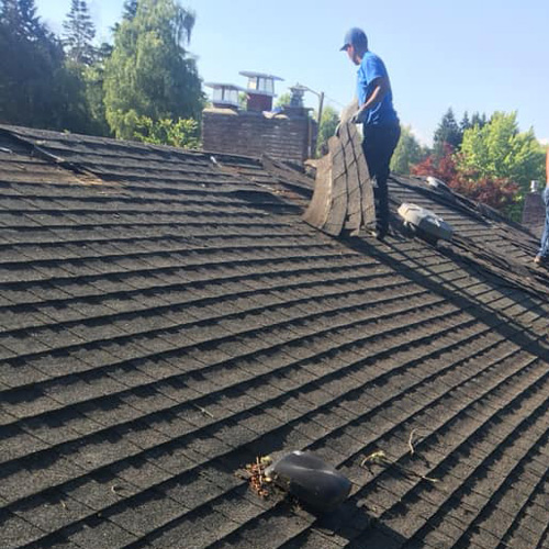 Old roof shingles that need to be torn off